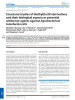 Structural studies of diethyltin(IV) derivatives and their biological aspects as potential antitumor agents against Agrobacterium tumefacien cells.