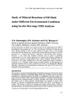 Study of Mineral Reactions of Oil Shale under Different Environmental Conditions using In-situ Hot-stage XRD Analyses.