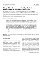 Study of the structure and stability of cobalt nanoparticles for ferrofluidic applications.