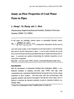 Study on Flow Properties of Coal-Water Paste in Pipes.