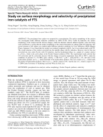 Study on surface morphology and selectivity of precipitated iron catalysts of FTS.