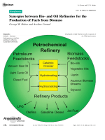 Synergies between Bio- and Oil Refineries for the Production of Fuels from Biomass.