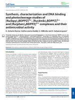 Synthesis  characterization and DNA binding and photocleavage studies of [Ru(bpy)2BDPPZ]2+  [Ru(dmb)2BDPPZ]2+ and [Ru(phen)2BDPPZ]2+ complexes and their antimicrobial activity.