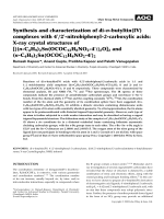 Synthesis and characterization of di-n-butyltin(IV) complexes with 42-nitrobiphenyl-2-carboxylic acids  X-ray crystal structures of [{(n-C4H9)2Sn(OCOC12H8NO24)}2O]2 and (n-C4H9)2Sn{OCOC12H8NO24}2.