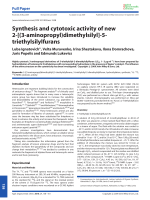 Synthesis and cytotoxic activity of new 2-[(3-aminopropyl)dimethylsilyl]-5-triethylsilylfurans.