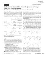 Synthesis of the Transfer-RNA Nucleoside Queuosine by Using a Chiral Allyl Azide Intermediate.