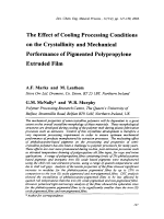 The Effect of Cooling Processing Conditions on the Crystallinity and Mechanical Performance of Pigmented Polypropylene Extruded Film.