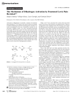 The Mechanism of Dihydrogen Activation by Frustrated Lewis Pairs Revisited.