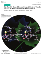 The Possible Role of Proton-Coupled Electron Transfer (PCET) in Water Oxidation by PhotosystemII.