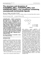 The structure and dynamics of FeH(DMPE)2(BH4)  FeH(DEPE)2(BH4) and FeH(DPrPE)2(BH4)  Iron complexes containing monodentate borohydride ligands.