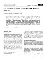 Theorganotin industry rises to the HPV challenge.
