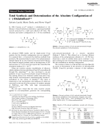 Total Synthesis and Determination of the Absolute Configuration of ()-Dolabriferol.