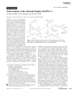 Total Synthesis of the Thiazolyl Peptide GE2270A.