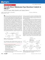 Towards Direct Mukaiyama-Type Reactions Catalytic in Silicon.