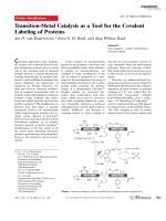 Transition-Metal Catalysis as a Tool for the Covalent Labeling of Proteins.