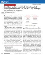 Two-Chain Insulin from a Single-Chain Branched Depsipeptide Precursor  The End of a Long Journey.