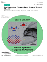 Two-Dimensional Polymers  Just a Dream of Synthetic Chemists.