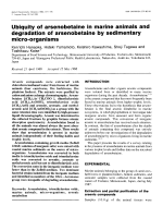 Ubiquity of arsenobetaine in marine animals and degradation of arsenobetaine by sedimentary micro-organisms.