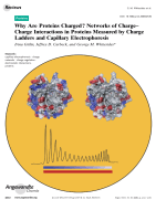 Why Are Proteins Charged Networks of ChargeЦCharge Interactions in Proteins Measured by Charge Ladders and Capillary Electrophoresis.