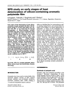 XPS study on early stages of heat deterioratin of silicon-containing aromatic polymide film.