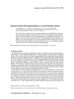 Disseminated strongyloidiasis in Erythrocebus patas.