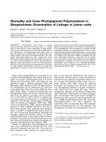Diurnality and cone photopigment polymorphism in strepsirrhines  Examination of linkage in Lemur catta.