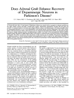 Does adrenal graft enhance recovery of dopaminergic neurons in Parkinson's disease.