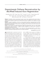 Dopaminergic pathway reconstruction by AktRheb-induced axon regeneration.