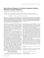 Early African diaspora in colonial Campeche  Mexico  Strontium isotopic evidence.
