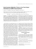 Early Eurasian migration traces in the Tarim Basin revealed by mtDNA polymorphisms.