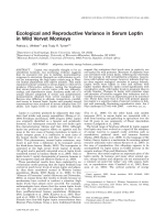 Ecological and reproductive variance in serum leptin in wild vervet monkeys.