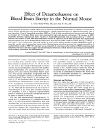 Effect of dexamethasone on blood-brain barrier in the normal mouse.