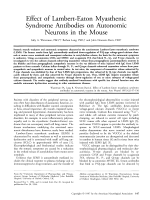 Effect of Lambert-Eaton myasthenic syndrome antibodies on autonomic neurons in the mouse.