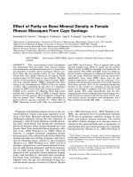 Effect of parity on bone mineral density in female rhesus macaques from Cayo Santiago.