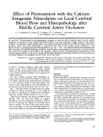 Effect of pretreatment with the calcium antagonist nimodipine on local cerebral blood flow and histopathology after middle cerebral artery occlusion.
