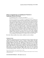Effect of testosterone on epididymal proteins in castrated rhesus monkeys.