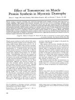 Effect of testosterone on muscle protein synthesis in myotonic dystrophy.