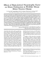Effects of brain-derived neurotrophic factor on motor dysfunction in wobbler mouse motor neuron disease.