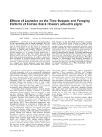 Effects of lactation on the time-budgets and foraging patterns of female black howlers (Alouatta pigra).