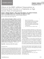 Effects of the BDNF val66met polymorphism on prefrontal brain function in a population at high genetic risk of schizophrenia.
