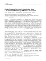 Elastic modulus variation in mandibular bone  A microindentation study of Macaca fascicularis.