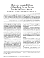 Electrophysiological effects of myasthenic serum factors studied in mouse muscle.