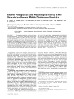 Enamel hypoplasias and physiological stress in the Sima de los Huesos Middle Pleistocene hominins.
