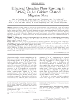 Enhanced circadian phase resetting in R192Q Cav2.1 calcium channel migraine mice