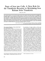 Entry of iron into cells  A new role for the transferrin receptor in modulating iron release from transferrin.