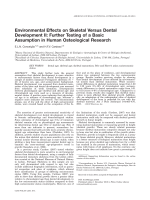 Environmental effects on skeletal versus dental development II  Further testing of a basic assumption in human osteological research.