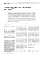 Epidemiology of neural tube defects.