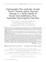 Erythropoietin plus insulin-like growth factor-I protects against neuronal damage in a murine model of human immunodeficiency virus-associated neurocognitive disorders.