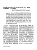 Ethnoarchaeology among the Efe pygmies  Zaire  Spatial organization of campsites.