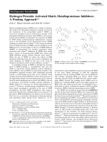 Hydrogen Peroxide Activated Matrix Metalloproteinase Inhibitors  A Prodrug Approach.
